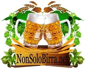logo_nonsolobirra_320x320