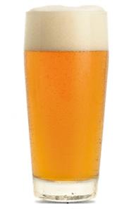 Bock Glass 2