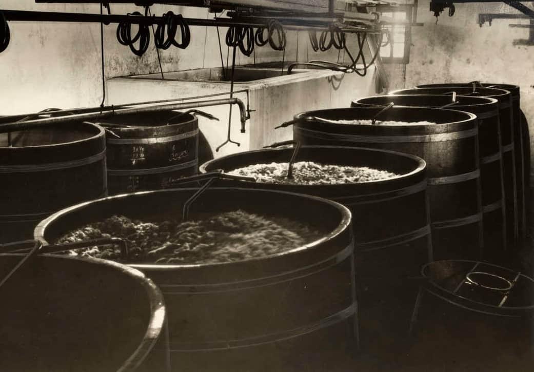 storia birra olandese birreria